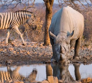 Namibia Self-Drive
