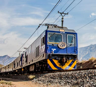 2-Day Blue Train to Cape Town