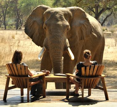 Intimate Zambia