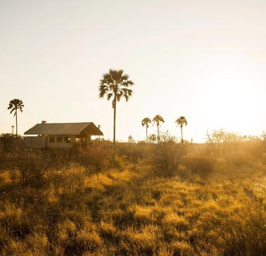 Complete Botswana & Falls