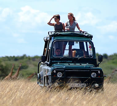 Masai Mara Explorer