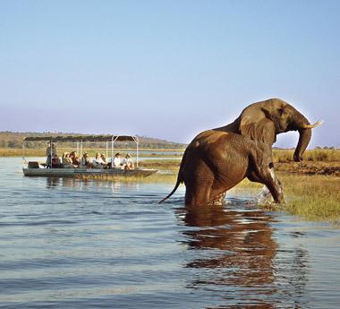Classic Zambia Safari