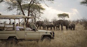 Ruaha Safari | Tanzania's Ruaha National Park - Overview | Safari Online