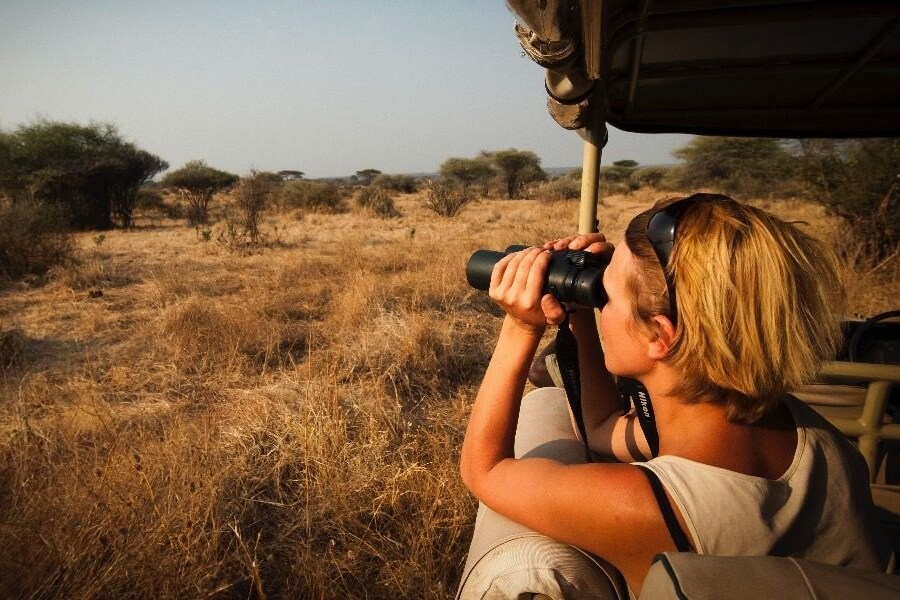 Safari Vehicles in East Africa - Open-Sided