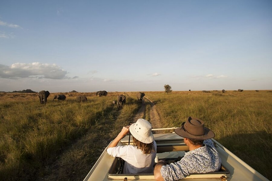 Safari Vehicles in East Africa - Closed Vehicles