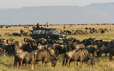 Safari Vehicles in East Africa