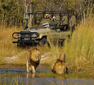 Grand Safari with Children (7+)