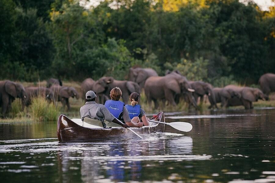 Chongwe Safari in Lower Zambezi