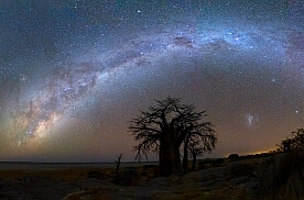 UNDER A SKY OF STARS: KUBU ISLAND